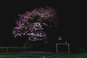 20200610 - Inauguração espaço tênis - Créditos André Patroni-19