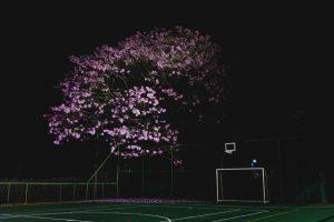 20200610 - Inauguração espaço tênis - Créditos André Patroni-18